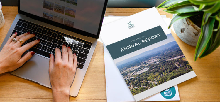 Annual Report Blog Header Asheville