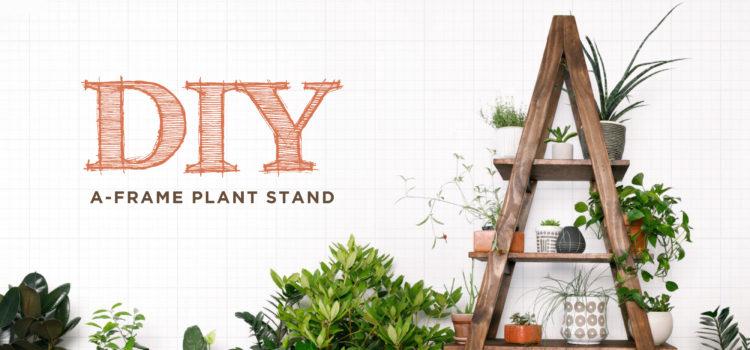 DIY Plant Stand - NEST Magazine - Nest Realty