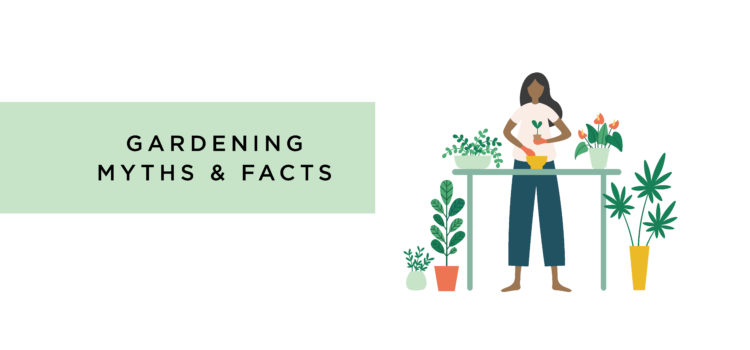 Gardening Myths and Facts Nest Realty - NEST Magazine
