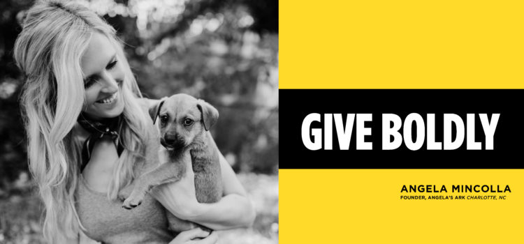 Give Boldly Animal Rescue